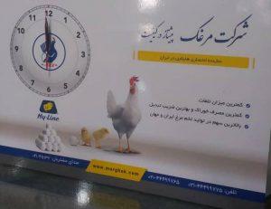 چاپ تخته شاسی | چاپ و تبلیغات محیا